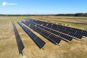 BayWa r.e.'s 133.6MW Fern Solar Project under construction in Edgecombe County, NC