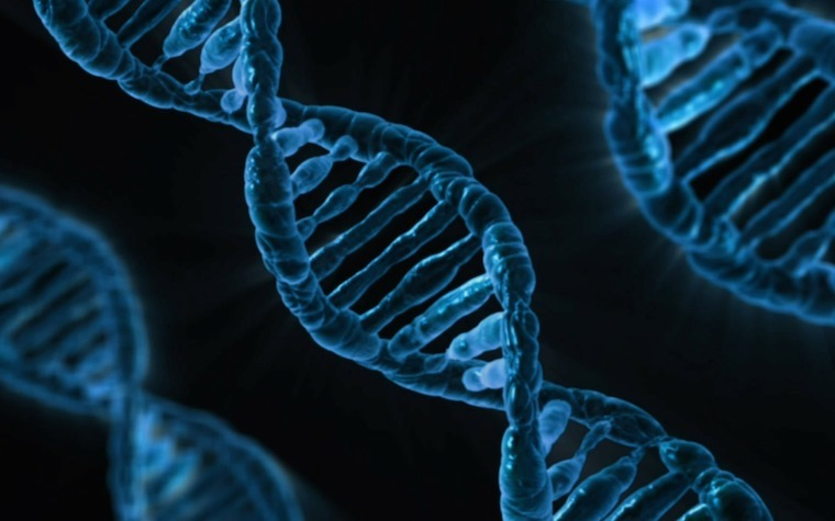 Scientists have found a new genetic mutation that could cause progressive motor function loss.