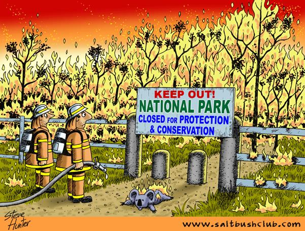 Bushfire in Australian National Parks: Cartoon.