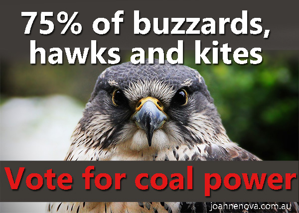 75% of Buzzards Vote For Coal Power