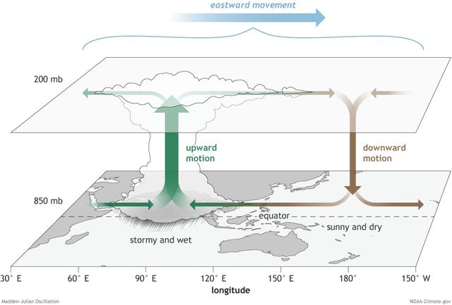 Madden-Julian Osscilation, Convection, diagram.