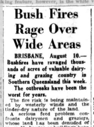 Bushfire, Queensland, 1951, News