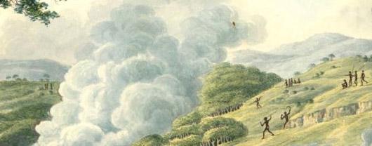 Joseph Lycett, Firestick farming.