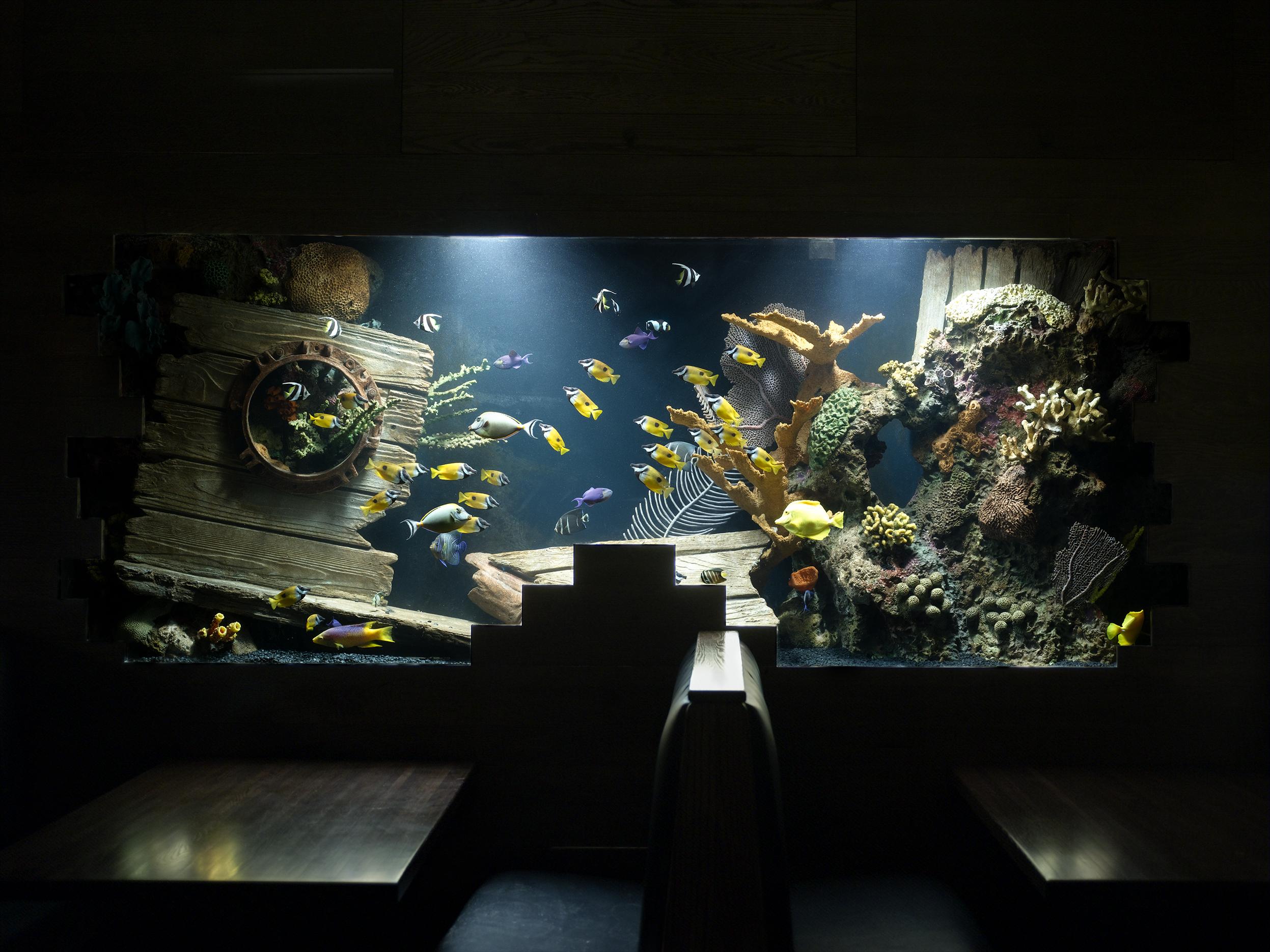 Eel reef 2a