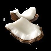 Ingredients coconut