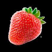 Strawberry 352x352