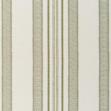 Jasper Performance Fabric inIndian Garden Stripe in Green