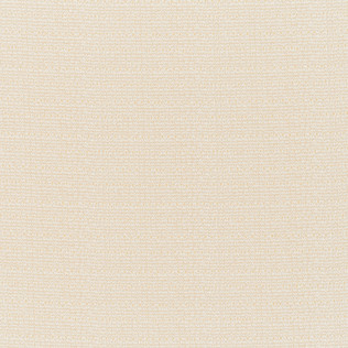 Jasper Performance Fabric in Indian Garden Plain in Cream