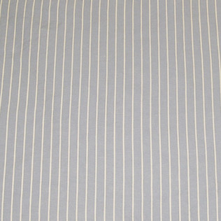 Jasper Fabrics inCharleston - Sky Blue
