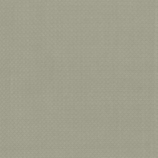 Templeton Fabric inPanna - Sage