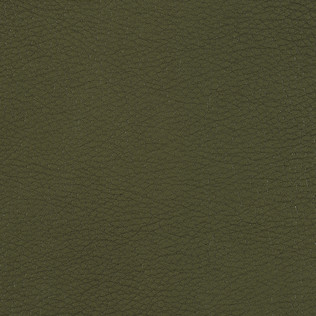 Jasper Leather inDerby - Emerald