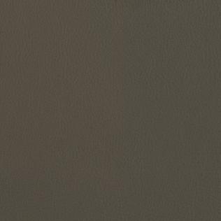 Jasper Leather in Ombre- Greystone
