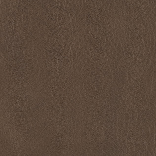 Jasper Leather in Ombre - Seal