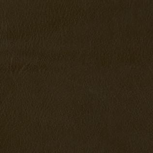 Jasper Leather in Ombre - Loft