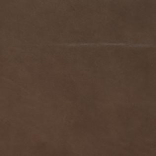 Jasper Leather inEvora - Mink