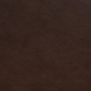 Jasper Leather inEvora - Mocha