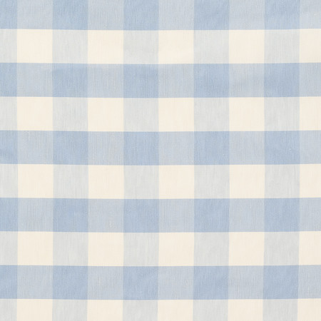 T1011 02 indore check   pale blue