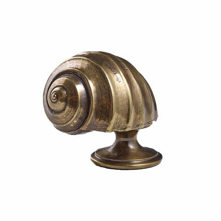 Moon snail cupboard knob web