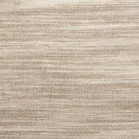 Swatch ew104 18 weathered sandstone web