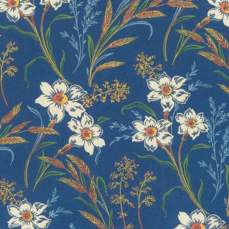 Blue vera crop 525x465
