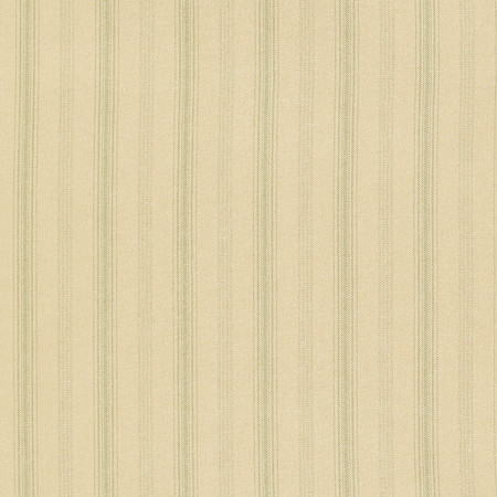 T1005 05 casey stripe   green