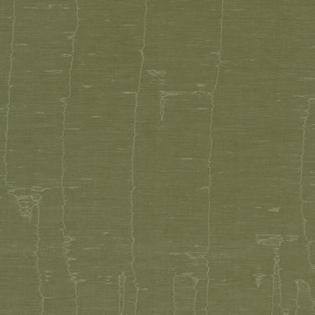 T1057 06 olas moss