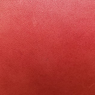 Jasper Leather inLucen - Ruby