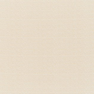 Jasper Outdoor Fabric in Indian Garden Plain - Cream