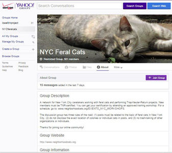 New York City online feral cat group
