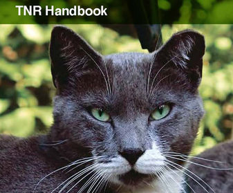 Neighborhood Cats TNR Handbook