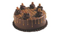 Haagen Dazs Caramel Drizzle Cake