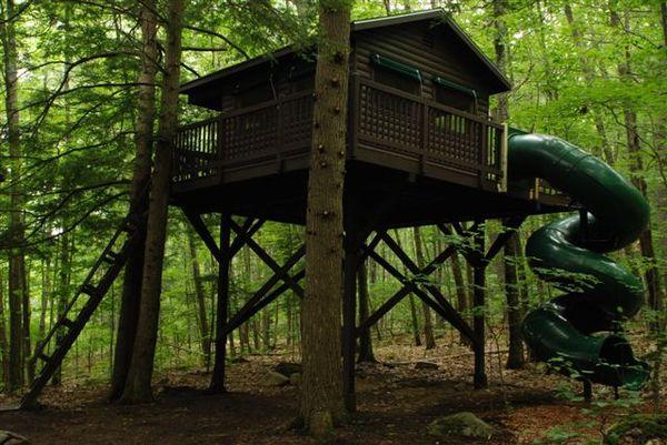 Tree houses 021