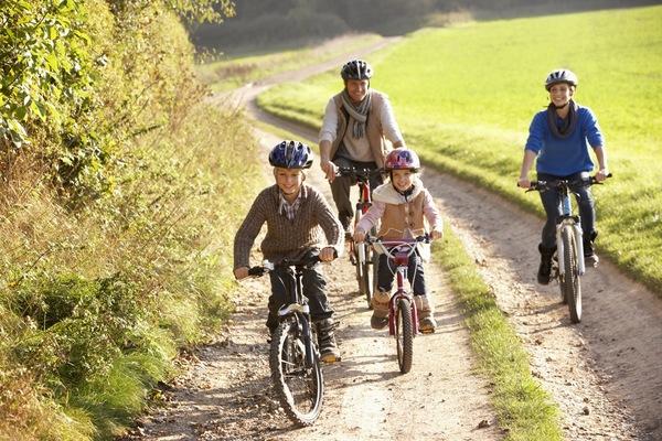 Bike hire family