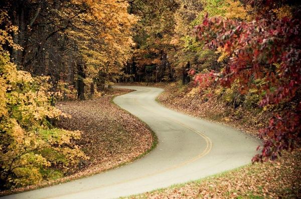Deleane miller   blue ridge parkway