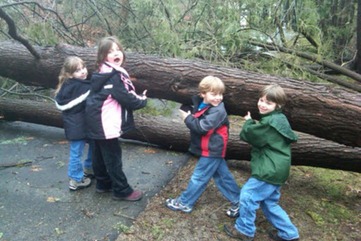 03 14 10   tree from storm with kids   copy