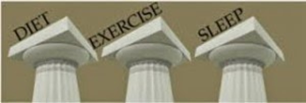 3 pillars of health 300x101