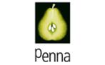Large_penna