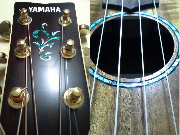 Very pretty inlays and easy to install