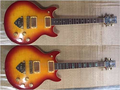 Ibanez Bob Weir Model
