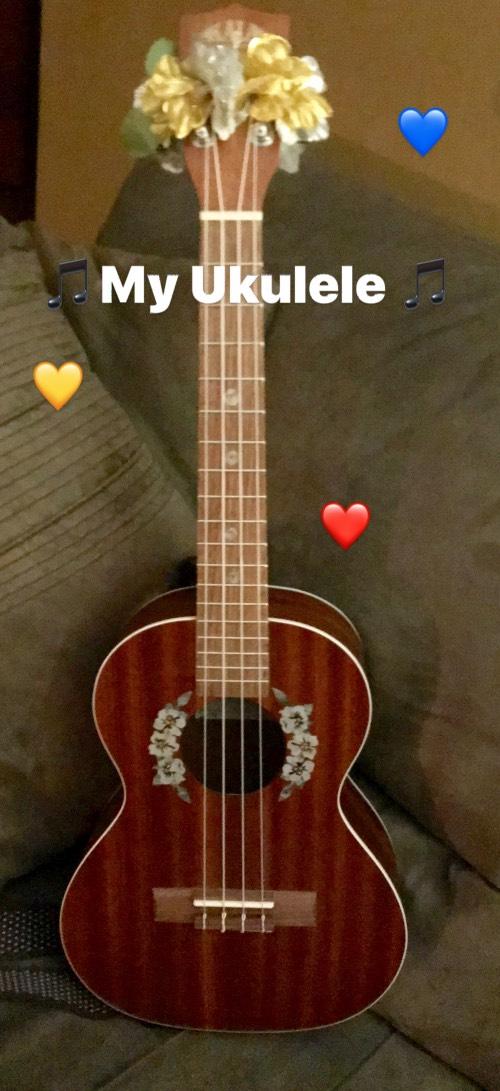 Hibiscus Flowers Rosette on KALA concert ukulele
