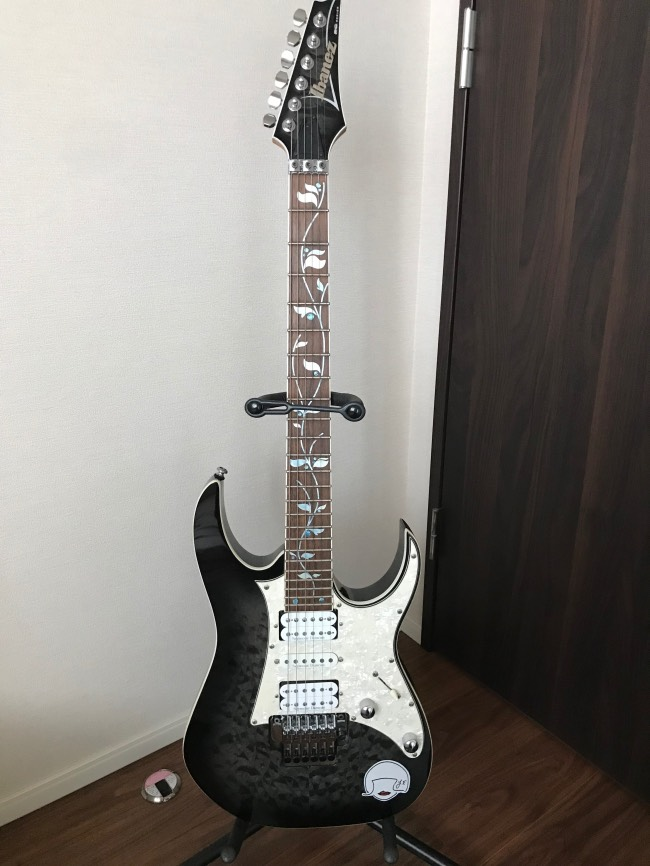 Ibanez RG with Tree J Custom Vai Vine