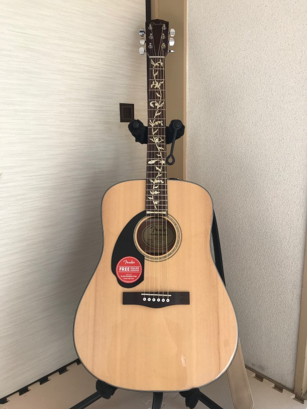 fender Acoustic Guitar Lefty with Tree Vine Inlay Sticker