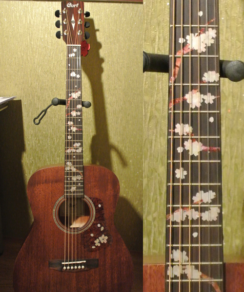 Cort Acosutic guitar