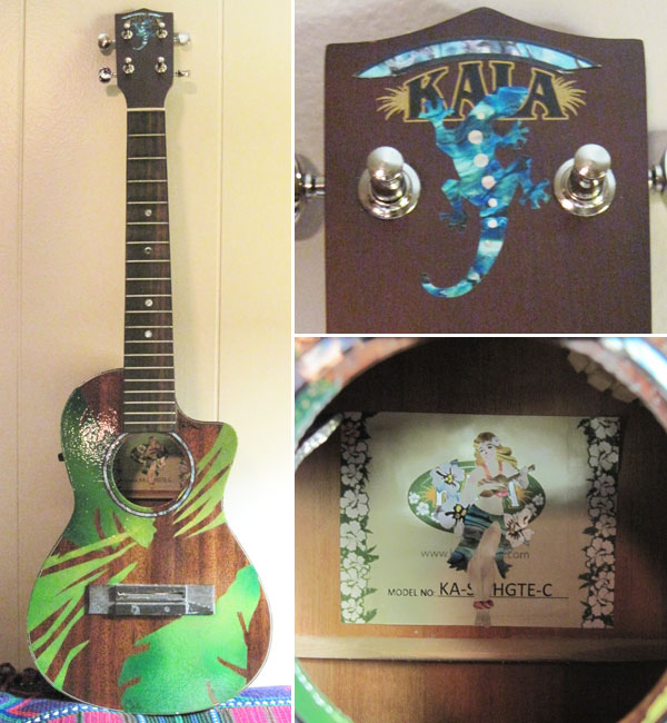 ukulele and embellished