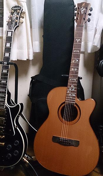 Meridaのアコースティック・ギター ネック インレイ