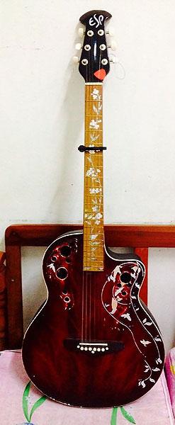 ovation inlay guitar neck