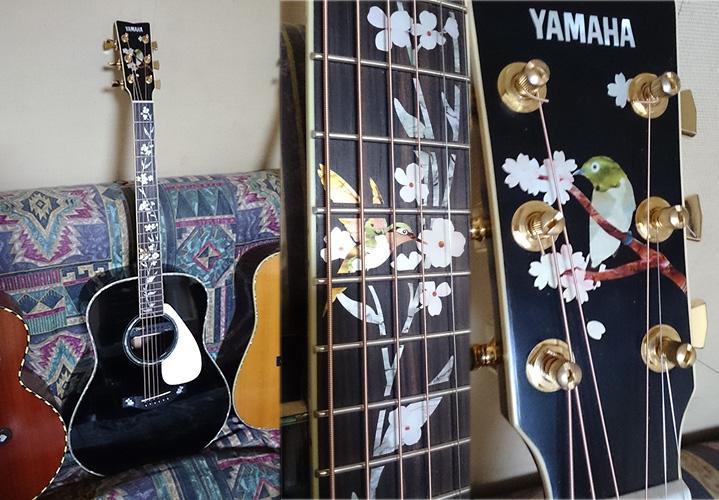 ブラックのYAMAHA/LL-16