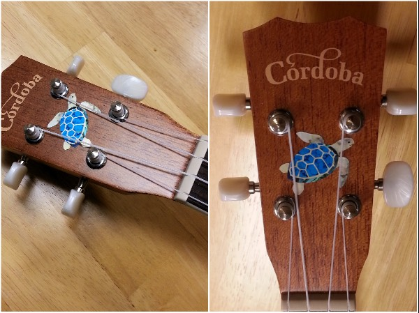 Nice turtle decal on Cordoba ukulele