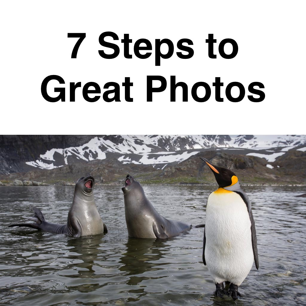 7 Steps to Great Photos