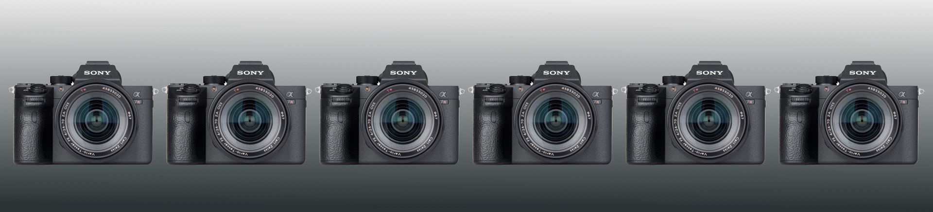 featured image of post: Sony A7RIII:  My Five Faves